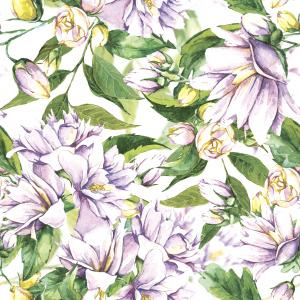 Watercolor pattern with blooming Jasmine