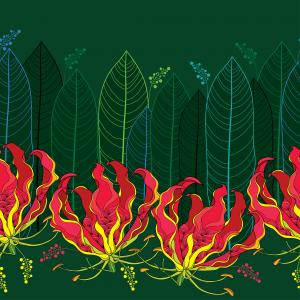Seamless pattern with Gloriosa superba or flame lily, tropical flower and leaf on the dark green background.