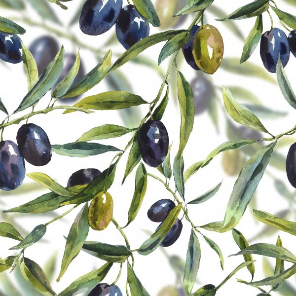 Watercolor pattern with branches of the olive tree