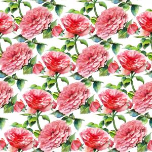 Watercolor seamless pattern with roses on a white background