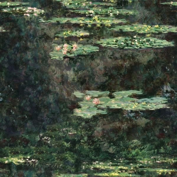 Water Lilies, 1904