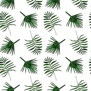 Palm leafs pattern