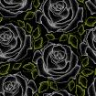 Seamless pattern with dotted white roses and green leaves on the black.