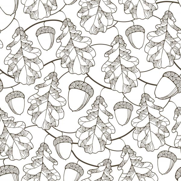 Autumn background with outline oak leaf and acorn for September design.