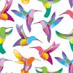 Seamless pattern with colorful flying Hummingbird or Colibri.