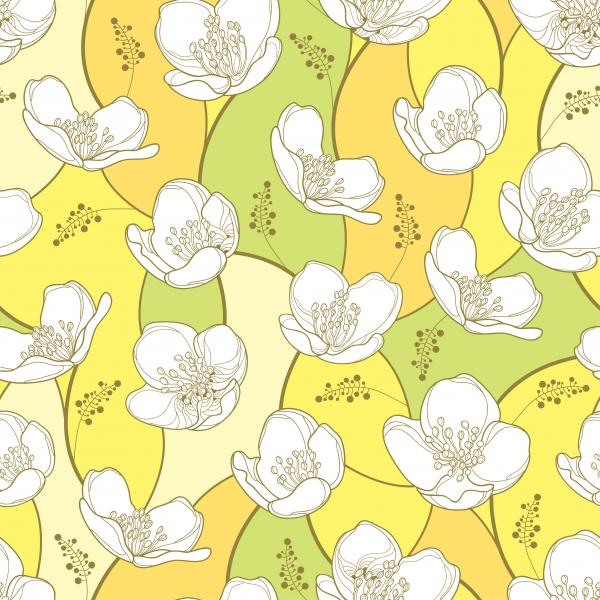 Seamless pattern with outline white Jasmine flowers on the pastel background.