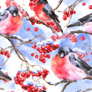 Winter watercolor pattern with bullfinches and rowan branch on blue