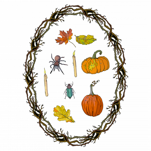 Autumn  Halloween symbols. Pumpkins, spider, wreath branches frame.