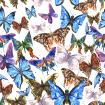 Beautiful colorful summer watercolor butterflies pattern
