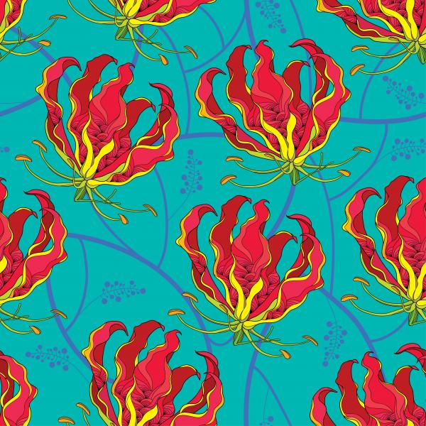 Seamless pattern with Gloriosa superba or flame lily, tropical flower on the turquoise background.