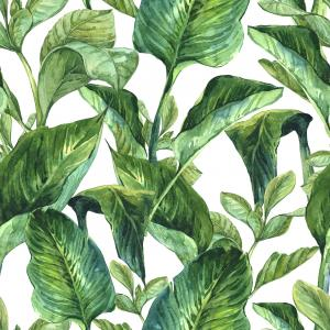 Watercolor Exotic Background with Tropical Leaves