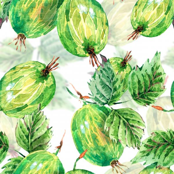 Watercolor gooseberries pattern