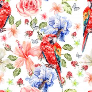 Pattern with parrot and flowers of iris and roses