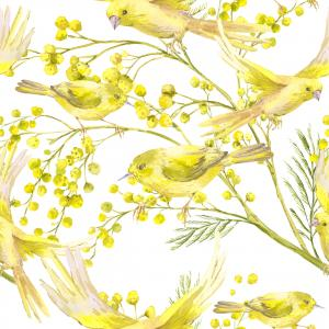 Spring Pattern with Watercolor Sprig of Mimosa and Yellow Birds