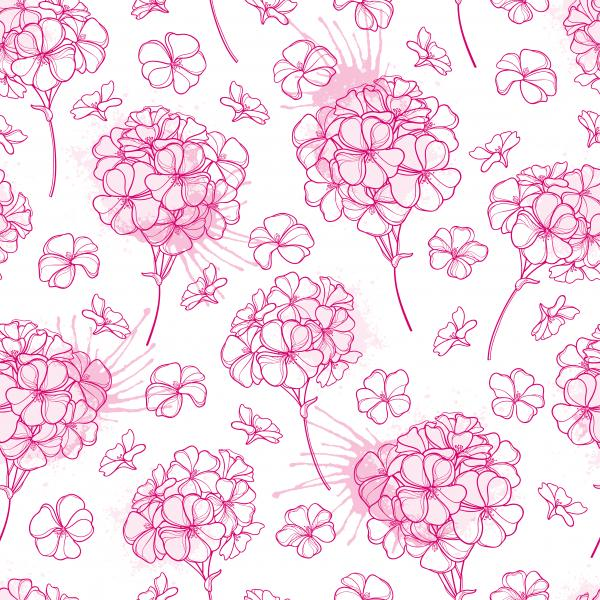 Pattern with outline pastel pink Geranium or Cranesbills flower and bud on the white background.