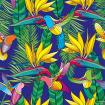Seamless pattern with Strelitzia reginae and colorful flying Hummingbird or Colibri in contour style.
