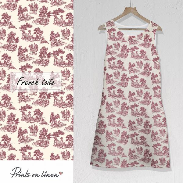 Dress / French Toile