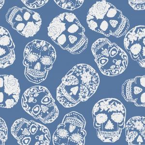 Skulls blue background