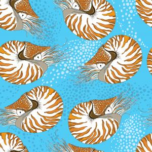 Seamless pattern with Nautilus Pompilius or chambered nautilus on the blue background with bubbles.