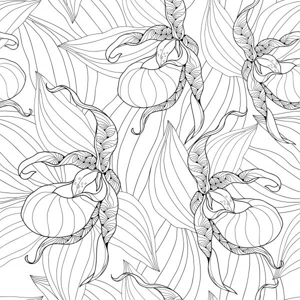 Seamless pattern with outline Lady's-slipper orchid and leaves on the white background.