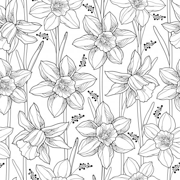 Seamless pattern with outline narcissus or daffodil flower and leaves on the white background.