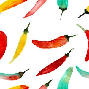 colorful chilli peppers, hand drawn watercolor