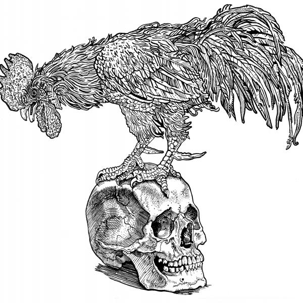 Rooster on the skull.