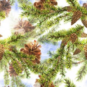 Christmas Watercolor pattern with Sprig of Fir Trees and Pine cones
