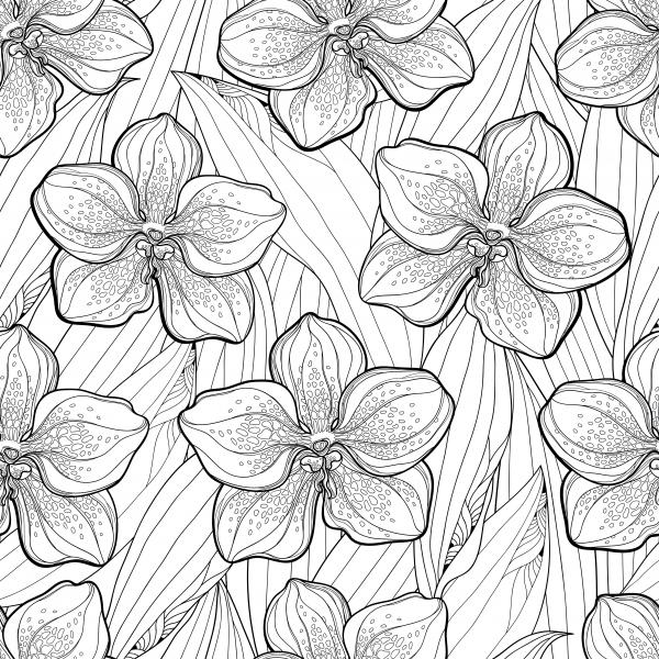 Seamless pattern with Vanda orchid flower and leaves on the white background.