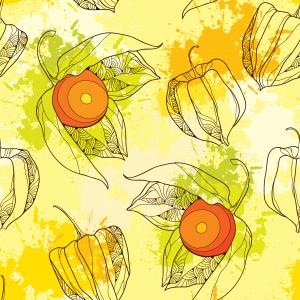 Seamless pattern with Physalis.