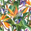 Tropical pattern with exotic flowers and butterflies